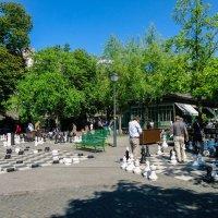 В парке :: Irina Shtukmaster