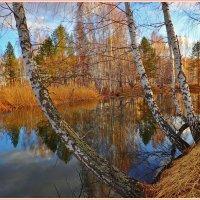 озерко на закате :: Геннадий Ячменев