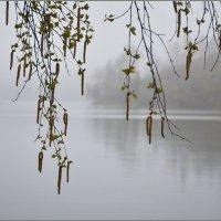 Предчувствие весны :: Николай Кувшинов
