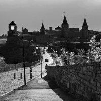 Камянец-Подольская крепость :: Андрий Майковский