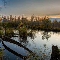 Осенний этюд :: vladimir