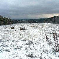 Прошел снег. :: Валерий Молоток