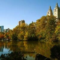 Осень в Нью Йорке :: Maxim Unarov