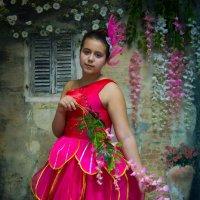 Цветочные феи :: Юлия