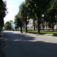Улица  Грюнвальдская  в  Ивано - Франковске :: Андрей  Васильевич Коляскин