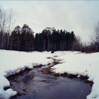 Весна вступает в свои права :: Иван Белоглазов