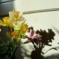 Весна :: Ника Светлакова