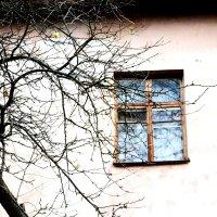 wind :: Юля Рудакова