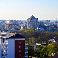 Кружа над городом.. :: Надежда Кульбацкая