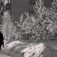 Зима :: Валентин Кузьмин