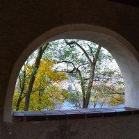 Вид на Влтаву :: Ольга