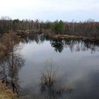 Река Серёжа. Разлив. :: Николай Масляев