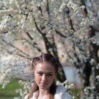 Весна :: Александр Бойко