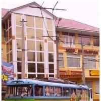 Автобус с принтом :: Kira Martin