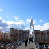 Мост в Павшинскую пойму :: Igor Khmelev
