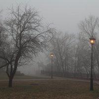 В тумане... :: Юлия Топоркова