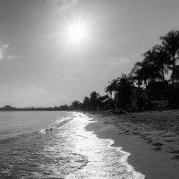 Пляж :: Евгений Логинов