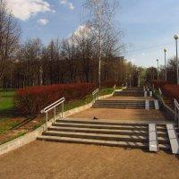 НЕ Потемкинская лестница в Одессе и НЕ на Дворцовой набережной :: Андрей Лукьянов
