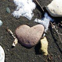 Холодное сердце :: Олеся Енина