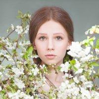 Весенний портрет :: Елена Черепицкая