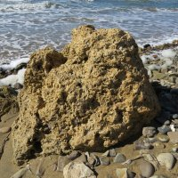 Камень на берегу :: Вера Щукина