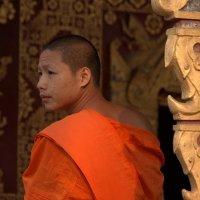 Монах из храма Сенсукарам :: Евгений Печенин