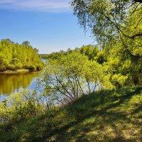 Цвет  весны  и  рыбачек.. :: Валера39 Василевский.