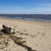 Весенний залив :: Aнна Зарубина