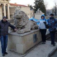 Приручение каменного льва. :: Серж Поветкин
