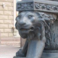 Львы в городе :: Ирина Фирсова