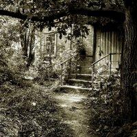 Secret garden :: Татьяна Зема