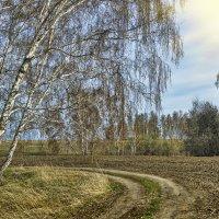 Проселочный поворот :: Дмитрий Конев