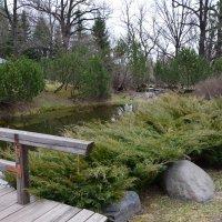 Японский сад. :: Oleg4618 Шутченко
