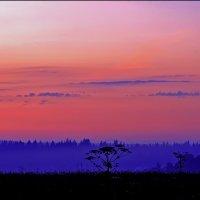 синий туман :: Дмитрий Анцыферов