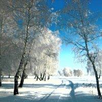 Зимняя... :: Кристина Девяткина