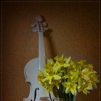 Весенняя музыка :: Павел Сухоребриков