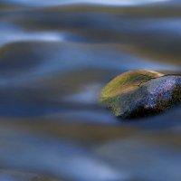 каменное сердце :: Лика Охрименко