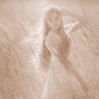 Палящее солнце :: Светлана Бажанова