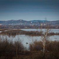 Майский вечер на озере Мылки. :: Сергей Щелкунов