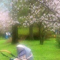 Первая весна :: Людмила Быстрова