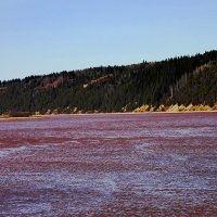 р.Чусовая ,весна лед сошел :: petyxov петухов