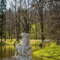 в парке :: Vasiliy V. Rechevskiy