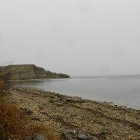 берег Волги :: наталья калета