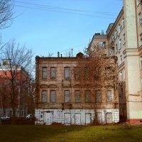 Старость - не радость :: Денис Масленников