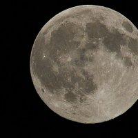 полная луна :: Владимир Пензин