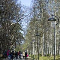 Возвращение с прогулки :: Sergey Lebedev