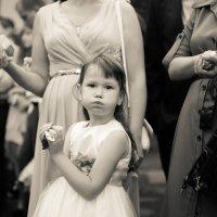 Девочка на свадьбе :: Сергей Зубарь