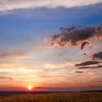 Полет на закате :: VitokFly