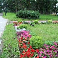 Александровский парк :: alemigun