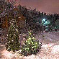 Новогодняя ночь в деревне. :: Edward J.Berelet